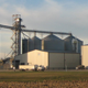 Ethanol Industry - Distillers Grains